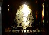 logo The Secret Treasures